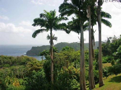 grounds of Sunset Valley Estate in Tobago with view of Englishman's Bay